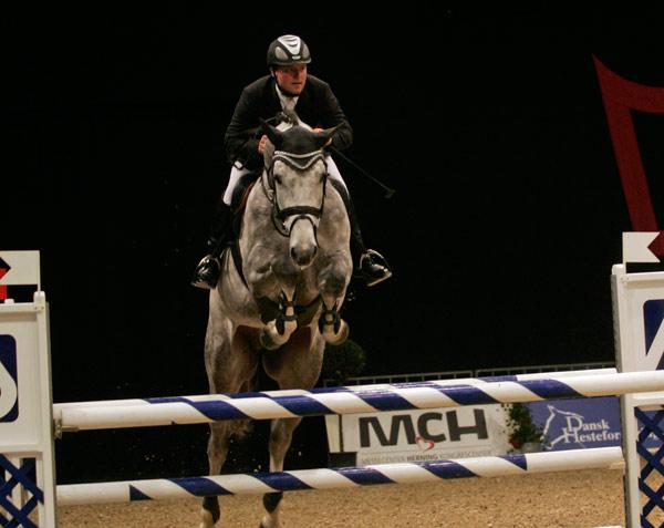 Årets sprangbetonte fløyhingst Chellys Z vant også to sprangklasser under Herning.