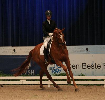 Isabel Bache viser JJ Rayban under Norsk Varmblods hingstekåring i januar i år.