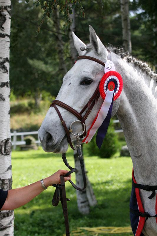 Engas Naranja vant 3-årstesten (foto: Anne Granberg).