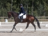 schufro-dreamIMG_3259