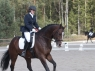 schufro-dreamIMG_3267