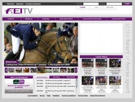 FEI TV (foto: faksimile: FEI TV)