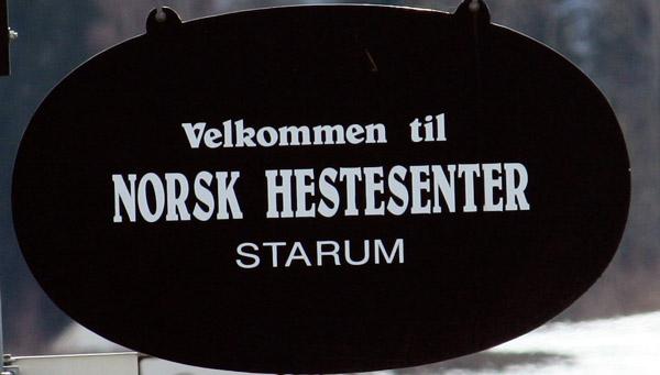 hestesenter