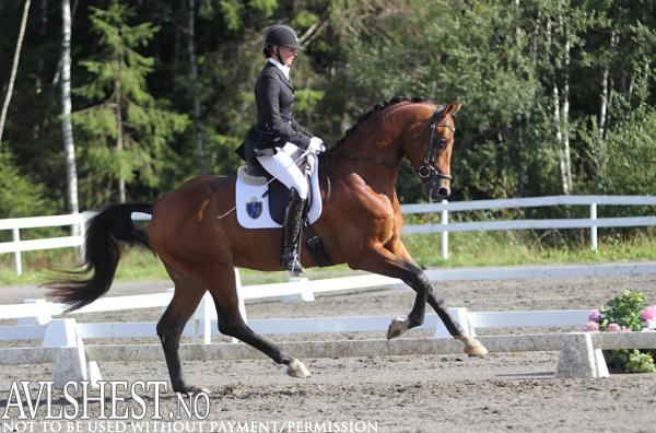 Det ble delt førsteplass i 4-årsfinalen. Her Camilla Qvistgaard og Kabri-Moon Q.