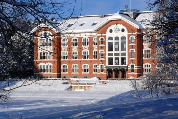 Universitetet på Ås, tidligere Landbrukshøgskolen, oppretter nå en stipendiatstilling på ridehestavl.